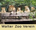 Walter Zoo near St. The Zoo, Alpine Coaster, Interactive Museum, Ropes Course, Family Activities, Switzerland, Parks, Kids, Animals