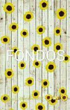 Fondos de pantalla / Tumblr. - - Liar 🤫 - Wattpad Sunflower Iphone Wallpaper, Galaxy Wallpaper Iphone, Iphone Background Wallpaper, Aesthetic Iphone Wallpaper, Cute Pastel Wallpaper, Neon Wallpaper, Joker Wallpapers, Cute Wallpapers, Pink Record Player