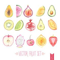 Fruits - 画像   Adobe Stock