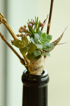 succulent Boutonniere with feathers, a magnet back and a rope wrap.