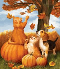 Fall Fun Kittens and Beagle Halloween 550 piece Jigsaw Puzzle