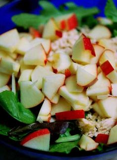 Chicken Apple Salad Recipe.. This looks delicious! I have a Kid Friendly breakfast and lunch menu on my Shrinking On a Budget Meal Plan that this would be perfect for!