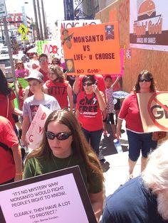 #MarchAgainstMonsanto #mam2015 #MarchAgainstMonsantoLasVegas - https://www.pinterest.com/tararayburn/gmo-omg-o/