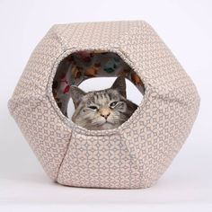 Bookmark this for the ultimate gifts for your cat-obsessed bestie, like this adorable bed for your feline friend. #partner