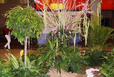 Jardín central - Centro de Convenciones Megápolis - Panamá 2015