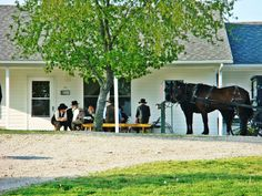 Amish men gathered round the table on a Sunday afternoon....they don't have a church building....they gather at one of their houses in their community for Sunday meetings.
