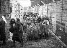 Culturizando: Imágenes históricas de Auschwitz