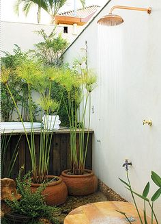Outdoor shower with open air and lots of plants - Dream patio