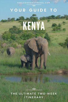 Kenya Pinterest