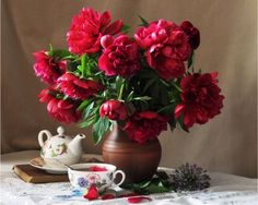 Red peonies - Flowers Wallpaper ID 1610193 - Desktop Nexus Nature