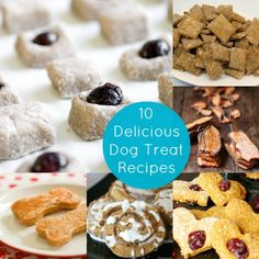 Yum, Yum, Woof: 10+ Delicious Dog Treat Recipes - diycandy.com