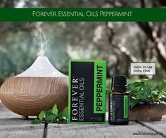 Forever™ Essential Oils Peppermint is extracted from plants that have been grown and harvested by the same farm for over 85 years. These plants have a naturally higher menthol content, providing the cooling effect that peppermint is known for. Home Based Work, Forever Living Products, Shampoo And Conditioner, Aloe Vera, Peppermint, Essential Oils, Essentials, Remedies, Content