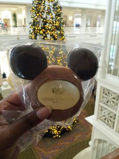 Delicious Gingerbread Mickey-Shaped Cookie from Disney's Grand Floridian Resort & Spa!