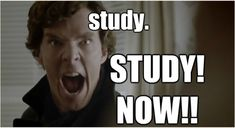 from http://benedict--cumberbatch.tumblr.com/post/69759624628/can-i-request-some-study-motivation