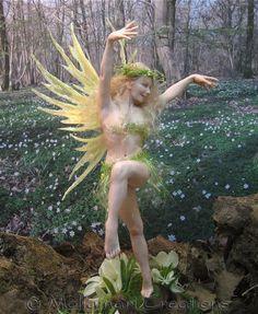 Spring Dancer