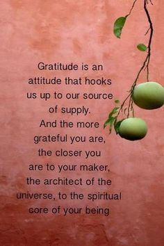 Gratitude is an attitude that hooks us up to our source of supply . Gratitude is an attitude that hooks us up to our source of supply . Great Quotes, Quotes To Live By, Life Quotes, Inspirational Quotes, Qoutes, Profound Quotes, Journey Quotes, Crush Quotes, Daily Quotes