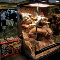 Best Leopard Gecko Viv I Want To Build This For My Arya