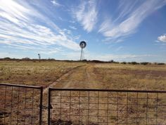 Strathmore Station, just outside Longreach, Outback Queensland