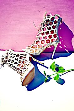 SHOE OF THE WEEK: Lola Shoetique Luxury Standard Heels