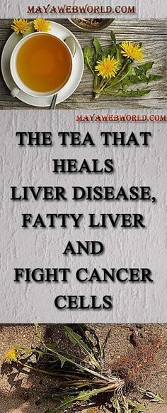 The Tea That Heals Liver Disease, Fatty Liver and Fight Cancer Cells – MayaWebWorld
