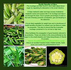 The Health Benefits Of Okra. Okra Health Benefits, Home Vegetable Garden, Vegetable Ideas, Natural Health, Natural Foods, Healthy Eating, Eating Clean, Healthy Foods, Food Industry