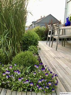 Nyanlagda rabatter runt trädäck och pergola - Hemma hos Titti07 Pergola Patio, Backyard Landscaping, Terrace Design, Garden Design, Outdoor Lounge, Balcony, Sidewalk, Deck, Landscape