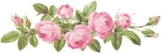 Charming Pink Rose Swags Shabby Waterslide Decals Transfers | eBay