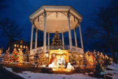 The Lunenburg Old Fashioned Christmas Festival Lunenburg Nova Scotia, Deco, Family Friendly Holidays, Christmas Events, Old Fashioned Christmas, White Christmas, Canada, Nativity, Houses