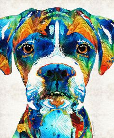 Colorful Boxer Dog Art By Sharon Cummings by Sharon Cummings
