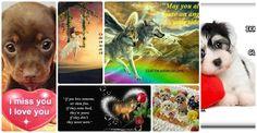 lolita stub – Google+ Missing You Love, Love You, Miss You, Sliders, Signs, Google, I Miss U, Te Amo, Je T'aime