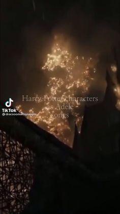 All Harry Potter Spells, Harry Potter Videos, Harry Potter Puns, Harry Potter Feels, Harry Potter Draco Malfoy, Harry Potter Decor, Harry Potter Pictures, Harry Potter Cast, Harry Potter Characters