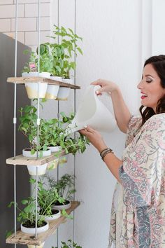 This DIY Indoor Herb Wall Is the Most Stylish Way to Add Green to Your Kitchen. Looking for ideas to make your collection of potted plants more attractive? Try this!