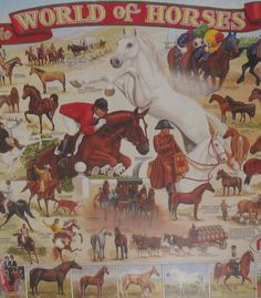 The World of Horses Jigsaw Puzzle NEW 1000 Pieces. Great gift idea for horse lover.