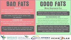 Good & Bad Fats