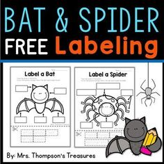 Label a Bat and Spider Science FREEBIE. Fun and simple science cut and paste activity. Students trace, cut, and paste to label the bat or spider. Perfect activity for kindergarten or first grade science during #fall or #Halloween. #bats #science #kindergarten #free