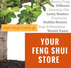 Feng Shui Tips, Products and Services - Vancouver, BC and Worldwide