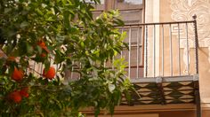 balcony Cast Iron, It Cast, Balcony, Fence, Gate, Barcelona, Outdoor Structures, Photo Illustration, Terrace