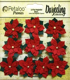 Petaloo - Botanica Collection - Floral Embellishments - Paper Poinsettias - Mini - Red at Scrapbook.com