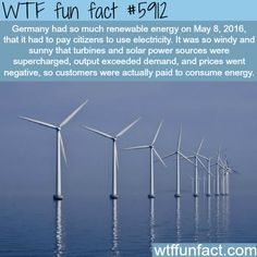 Germany had to pay citizens for using electricity… - WTF fun facts