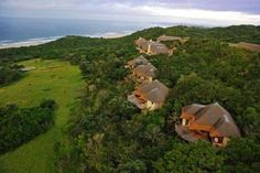 Oceana Beach and Wildlife Reserve Lodge, Eastern Cape, South Africa Game Reserve South Africa, Holiday Resort, Luxury Holidays, Places Of Interest, Africa Travel, Marine Life, Resort Spa, Places To See, Trip Advisor