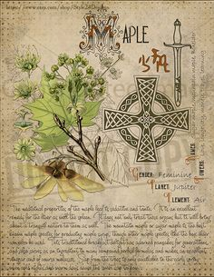 Book of Shadows page. Sorry, This page is only available to my customers for free, I don't sell it in the Etsy , Witchcraft Herbs, Magick Spells, Magic Herbs, Herbal Magic, Witch Spell Book, Grimoire Book, Witch Herbs, Pagan Witch, Witches