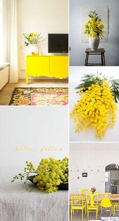 oh hello, yellow. / sfgirlbybay