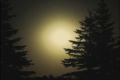 Foggy moon by Douglas Anderson on Capture Minnesota // the light fog made for a nice effect on this one, atleast on camera. I could not get a decent shot of it with out it dooing this.