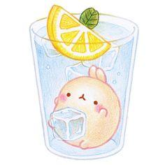 날씨가 너~~무 더워졌어요.6월인데 벌써부터 이정도라니ㅠㅠ역시 여름에는 시원한 얼음물이 최고.레몬도 상...