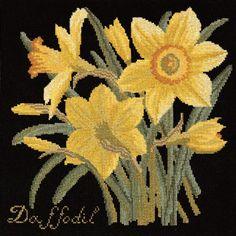 Elizabeth Bradley Daffodil