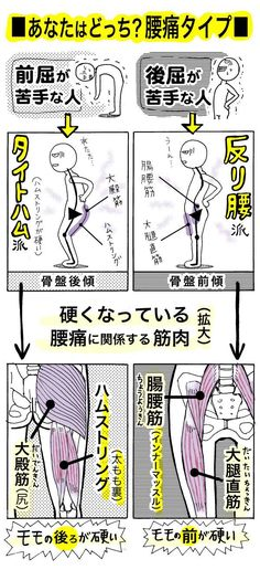 "Do you know ""Tight ham"" which is said to be a new cause of back pain? The abbreviation of the word hamstring [the muscle behind the thigh] that has become tight [stiff] has been introduced in ""Takeshi's Home Medicine"" [TV Asahi … Home Health, Health Diet, Health And Wellness, Health Care, Fitness Diet, Health Fitness, Body Fitness, Home Medicine, Body Action"