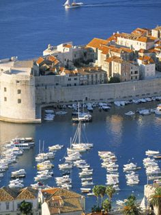 Join buildyful.com - the global place for architecture students.~~Dubrovnik, Croatia
