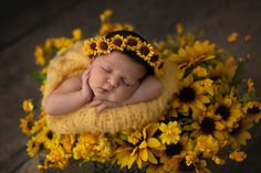 Courtney Morgan Photography specialized in maternity and newborn portraits and creating custom heirloom art for your home. Newborn Baby Photos, Newborn Poses, Newborn Shoot, Newborn Outfits, Newborn Pictures, Baby Girl Newborn, Baby Pictures, Newborn Photography Studio, Baby Girl Photography