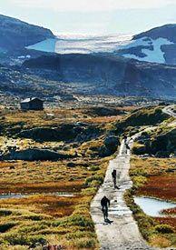 Rallarvegen: Bicycle from Finse to Myrdal 40k bicycle trip