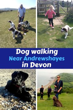 Andrewshayes Holiday Park has some Perfect Beautiful Relaxing East Devon Dog Pet Friendly WALKS for you all to go on. Enjoy the stunning Devon Countryside. Dog Friendly Holidays, Pet Dogs, Pets, Holiday Park, Dog Walking, Dog Friends, Dog Owners, Devon, Walks